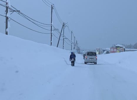 妙高、上越、大雪が降りました